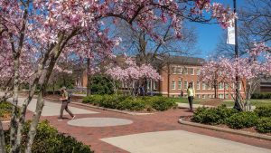 College Avenue in the Spring